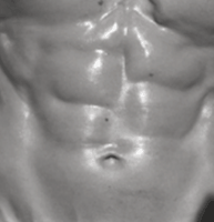 heydayDo example of six-pack abs 2