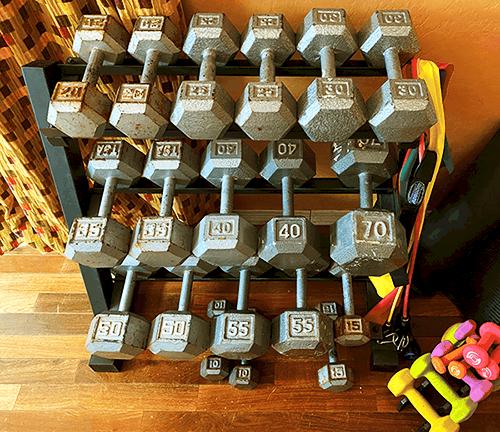 heydayDo author greg simon's dumbbell rack - heydayDo image