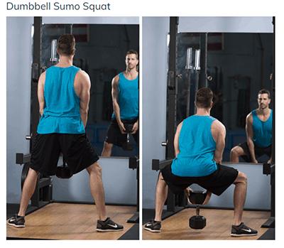 ACE Fitness demonstration of sumo squat - heydayDo image