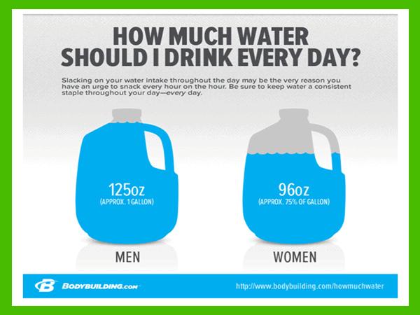 Bodybuilding dot com poster of water requirements - heydayDo image