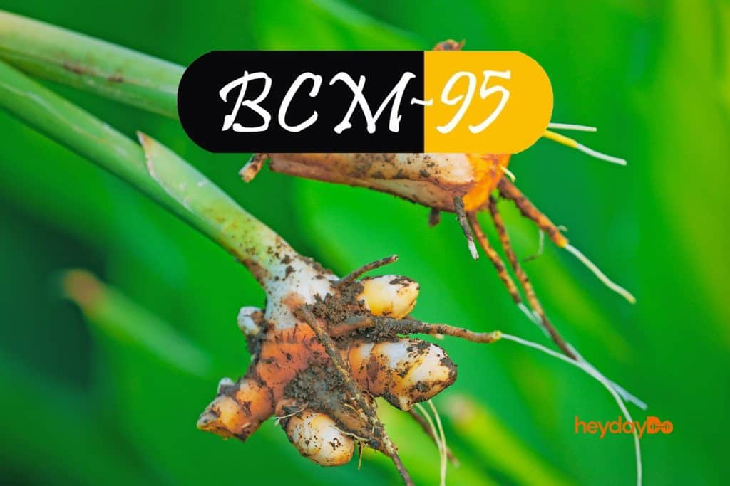 All About BCM-95 Curcumin And The Best Brands That Have It - heydayDo image